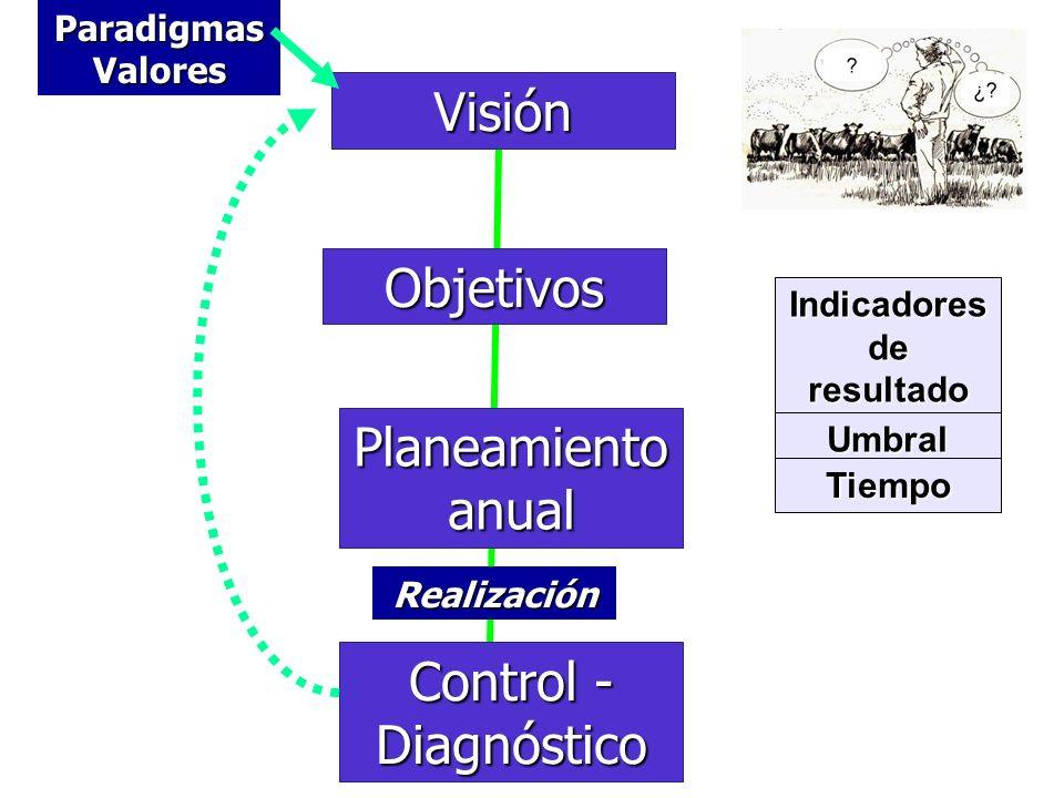 Visión Objetivos Planeamiento anual Control - Diagnóstico Indicadores de resultado Umbral Tiempo Paradigmas Valores Realización