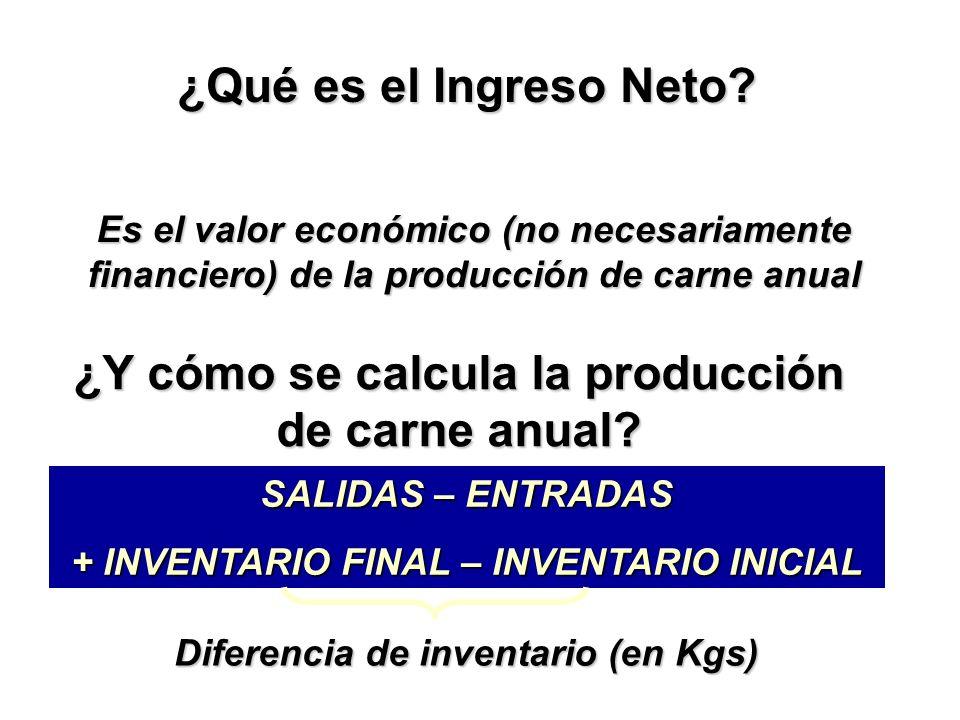 ¿Qué es el Ingreso Neto.