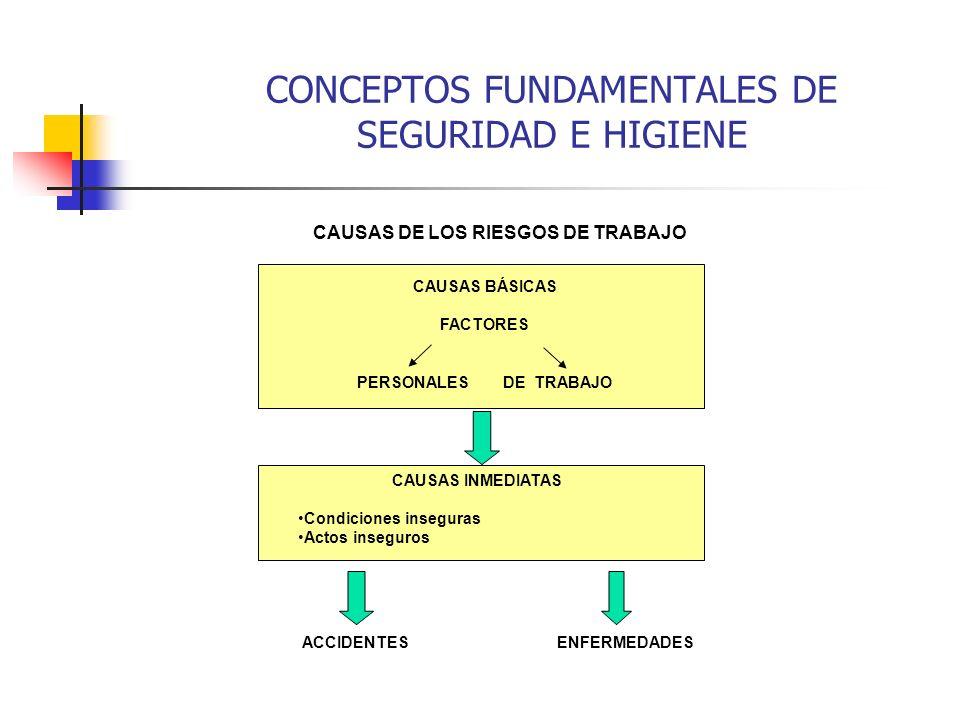 CONCEPTOS FUNDAMENTALES DE SEGURIDAD E HIGIENE CAUSAS DE LOS RIESGOS DE TRABAJO CAUSAS BÁSICAS FACTORES PERSONALES DE TRABAJO CAUSAS INMEDIATAS Condic