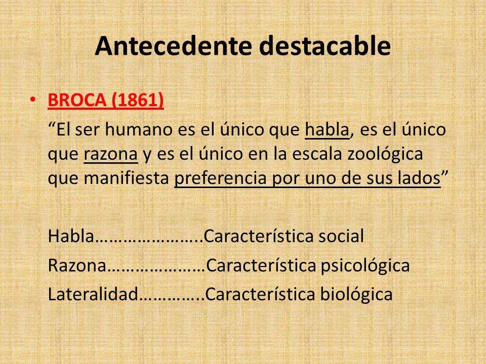 Antecedente destacable BROCA (1861) El ser humano es el único que habla, es el único que razona y es el único en la escala zoológica que manifiesta pr