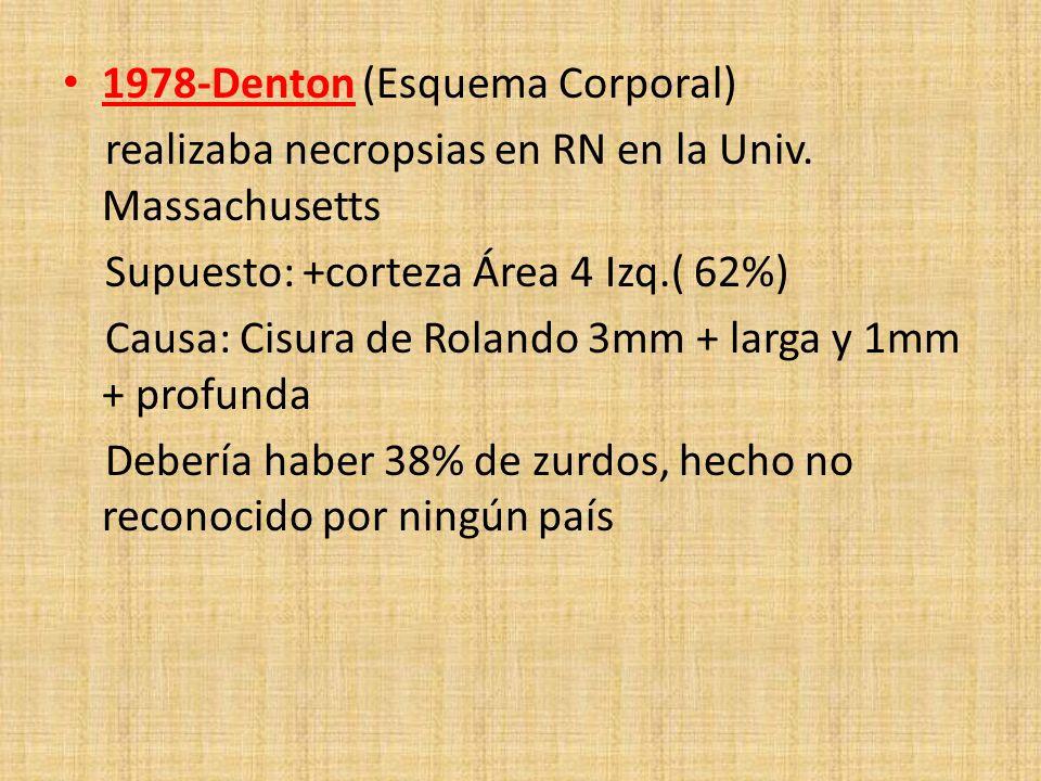 1978-Denton (Esquema Corporal) realizaba necropsias en RN en la Univ. Massachusetts Supuesto: +corteza Área 4 Izq.( 62%) Causa: Cisura de Rolando 3mm