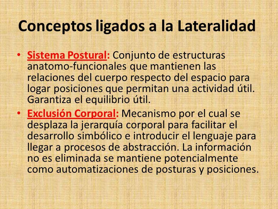 Conceptos ligados a la Lateralidad Sistema Postural: Conjunto de estructuras anatomo-funcionales que mantienen las relaciones del cuerpo respecto del