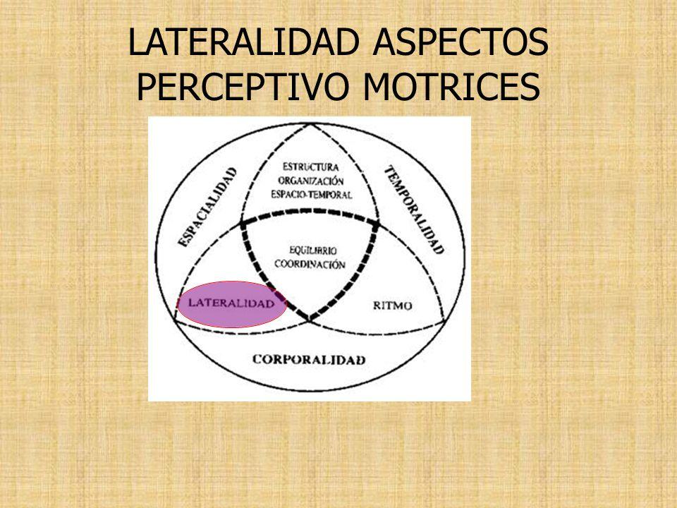 LATERALIDAD ASPECTOS PERCEPTIVO MOTRICES