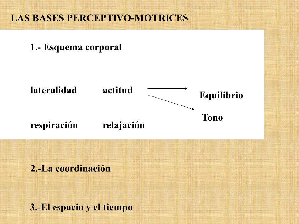 1.- Esquema corporal respiraciónrelajación lateralidad actitud Equilibrio Tono 2.-La coordinación 3.-El espacio y el tiempo LAS BASES PERCEPTIVO-MOTRI