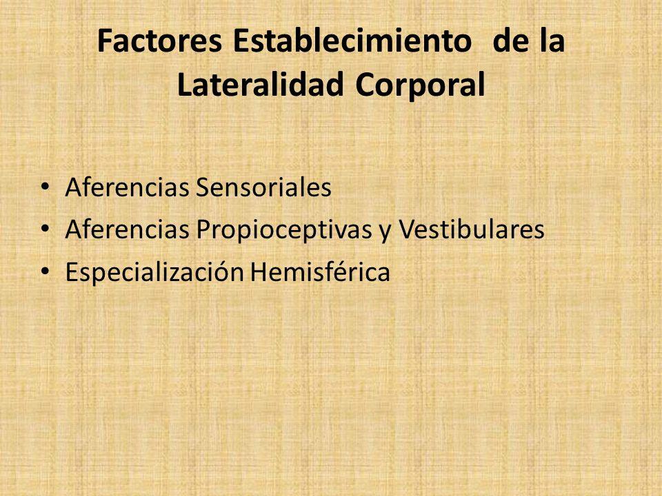 Factores Establecimiento de la Lateralidad Corporal Aferencias Sensoriales Aferencias Propioceptivas y Vestibulares Especialización Hemisférica