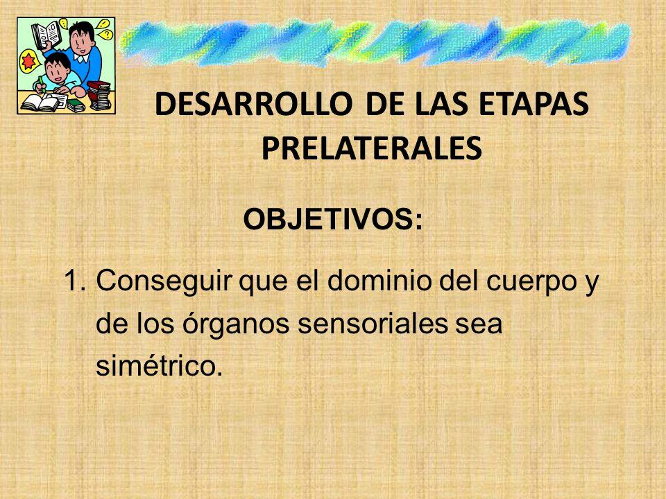 DESARROLLO DE LAS ETAPAS PRELATERALES OBJETIVOS: 1.Conseguir que el dominio del cuerpo y de los órganos sensoriales sea simétrico.