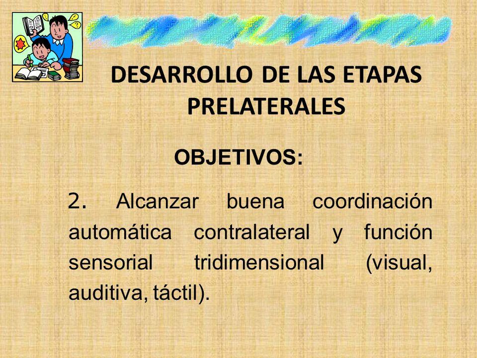 DESARROLLO DE LAS ETAPAS PRELATERALES OBJETIVOS: 2. Alcanzar buena coordinación automática contralateral y función sensorial tridimensional (visual, a