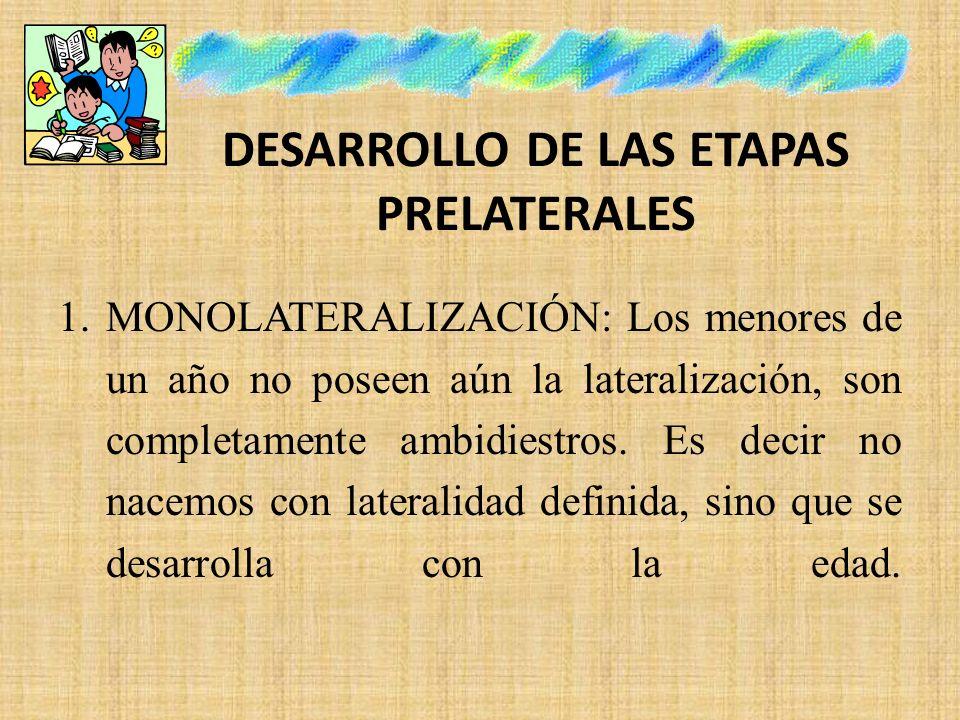 DESARROLLO DE LAS ETAPAS PRELATERALES 1.MONOLATERALIZACIÓN: Los menores de un año no poseen aún la lateralización, son completamente ambidiestros. Es