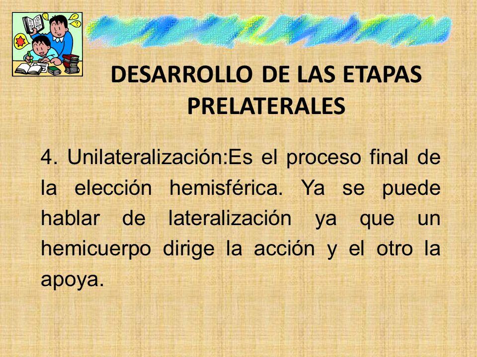 DESARROLLO DE LAS ETAPAS PRELATERALES 4. Unilateralización:Es el proceso final de la elección hemisférica. Ya se puede hablar de lateralización ya que