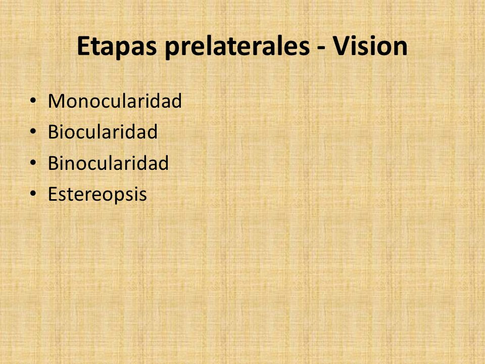 Etapas prelaterales - Vision Monocularidad Biocularidad Binocularidad Estereopsis