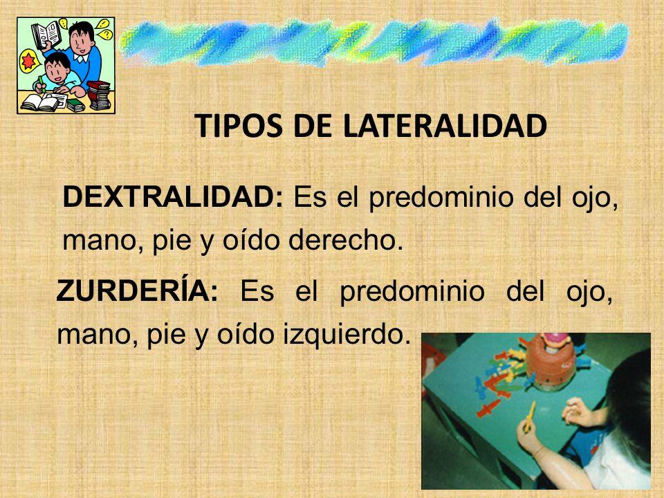 TIPOS DE LATERALIDAD DEXTRALIDAD: Es el predominio del ojo, mano, pie y oído derecho. ZURDERÍA: Es el predominio del ojo, mano, pie y oído izquierdo.