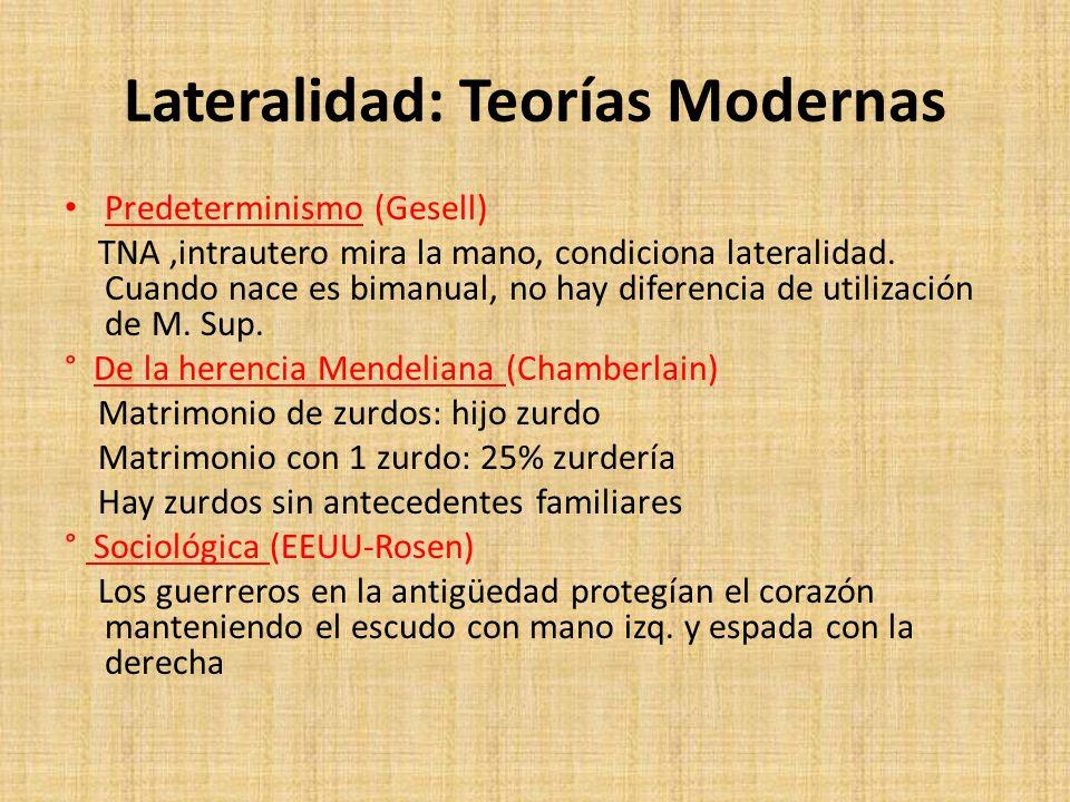 Lateralidad: Teorías Modernas Predeterminismo (Gesell) TNA,intrautero mira la mano, condiciona lateralidad. Cuando nace es bimanual, no hay diferencia