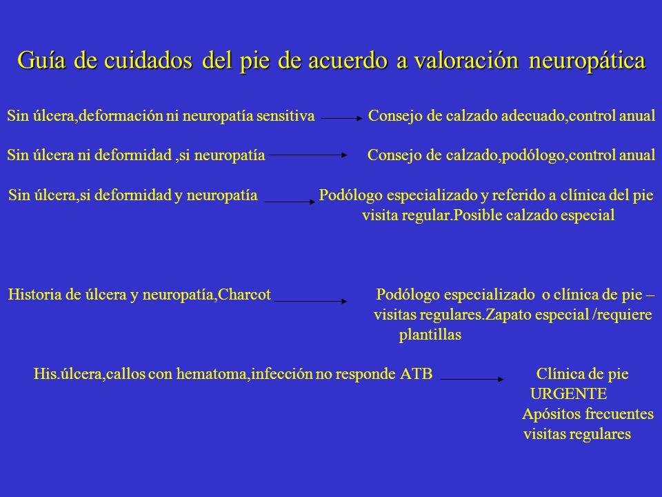 Guía de cuidados del pie de acuerdo a valoración neuropática Guía de cuidados del pie de acuerdo a valoración neuropática Sin úlcera,deformación ni ne