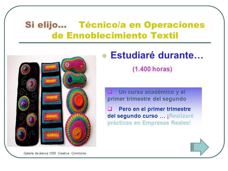 Si elijo… Técnico/a en Operaciones de Ennoblecimiento Textil Estudiaré durante… Un curso académico y el primer trimestre del segundo Pero en el primer
