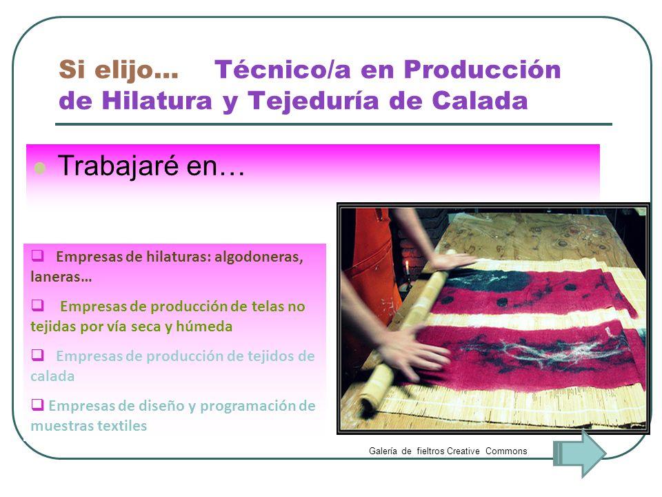 Si elijo… Técnico/a en Producción de Hilatura y Tejeduría de Calada Trabajaré en… Empresas de hilaturas: algodoneras, laneras… Empresas de producción
