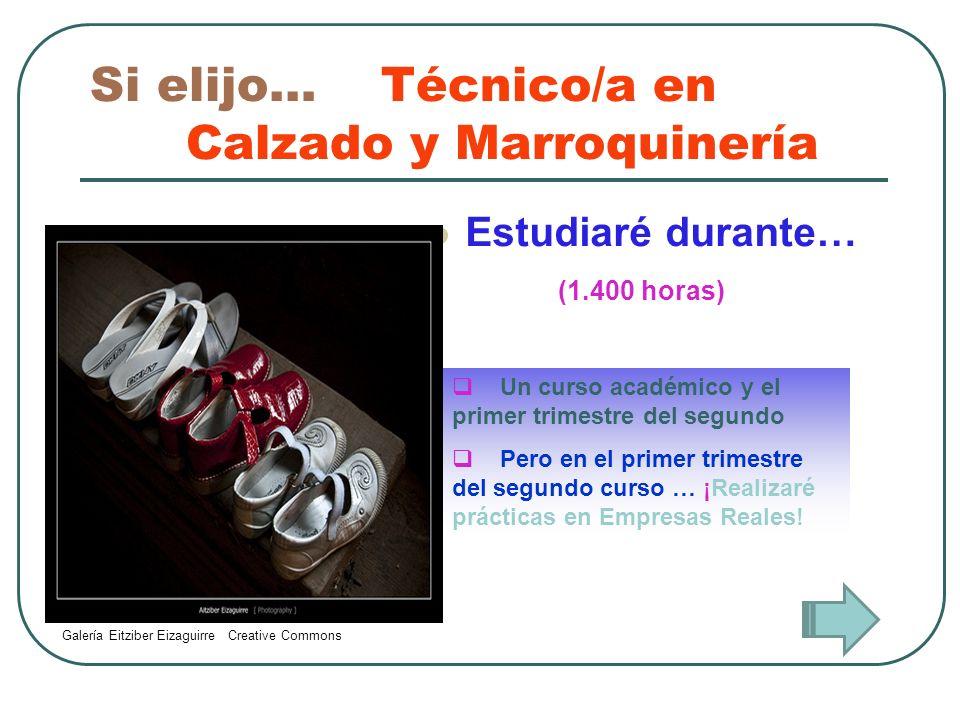 Si elijo… Técnico/a en Calzado y Marroquinería Trabajaré como… Cortador/a de artículos de piel y cuero Especialista en preparación y cosido, montaje y terminado de marroquinería y calzado Reparador/a de calzado y marroquinería Especialista en guarnicionería y en la confección de zapatos a medida Galería de CUEVA 2208 Creative Commons