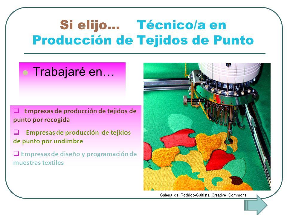 Si elijo… Técnico/a en Producción de Tejidos de Punto Trabajaré en… Empresas de producción de tejidos de punto por recogida Empresas de producción de