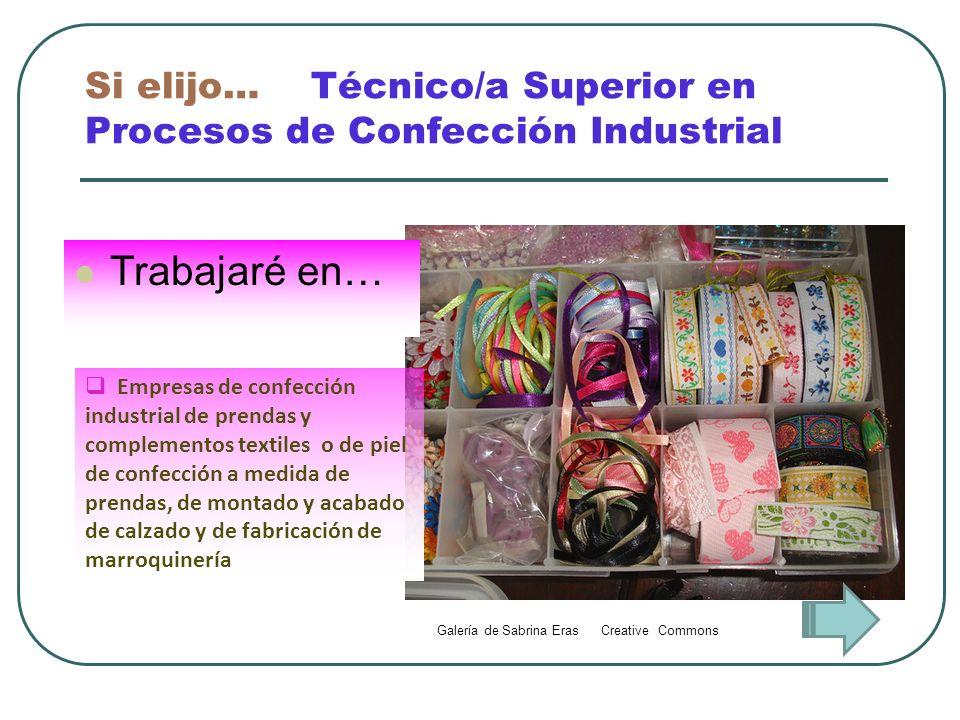 Si elijo… Técnico/a Superior en Procesos de Confección Industrial Trabajaré en… Empresas de confección industrial de prendas y complementos textiles o