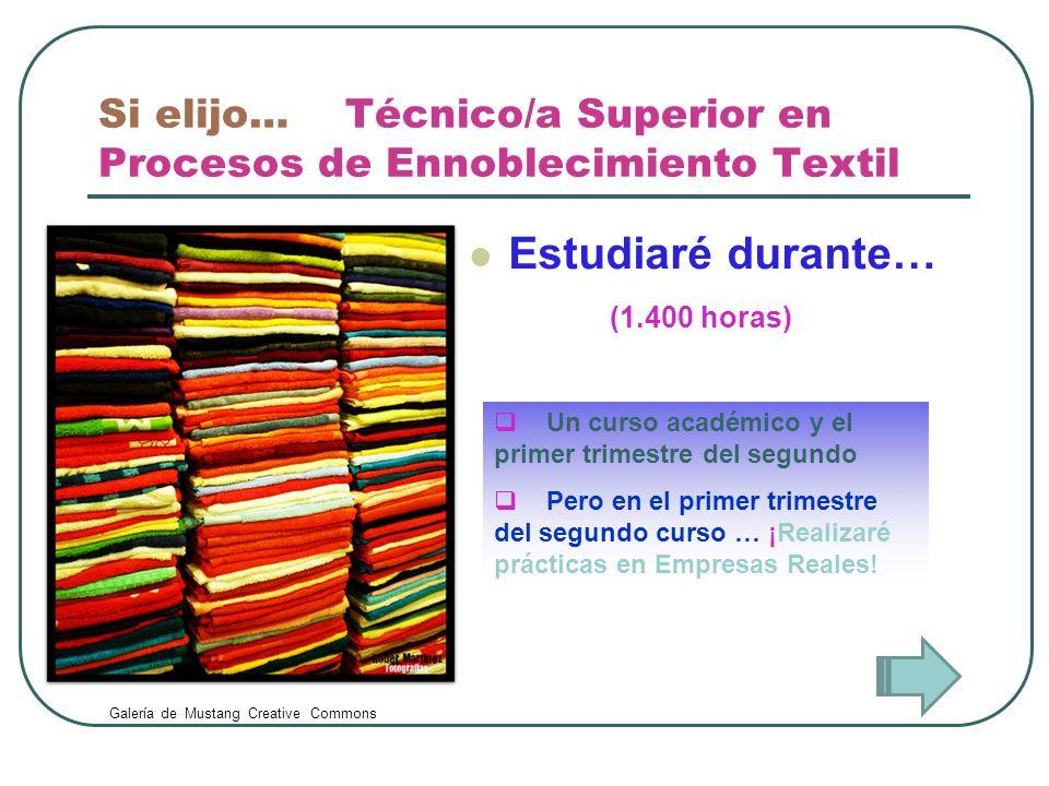 Si elijo… Técnico/a Superior en Procesos de Ennoblecimiento Textil Estudiaré durante… Un curso académico y el primer trimestre del segundo Pero en el