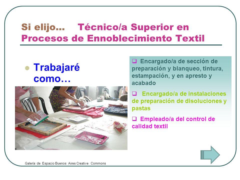 Si elijo… Técnico/a Superior en Procesos de Ennoblecimiento Textil Trabajaré como… Encargado/a de sección de preparación y blanqueo, tintura, estampac