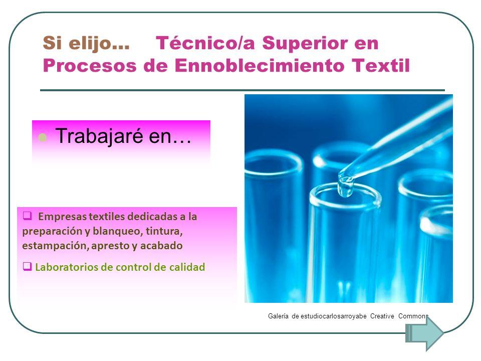 Si elijo… Técnico/a Superior en Procesos de Ennoblecimiento Textil Trabajaré en… Empresas textiles dedicadas a la preparación y blanqueo, tintura, est