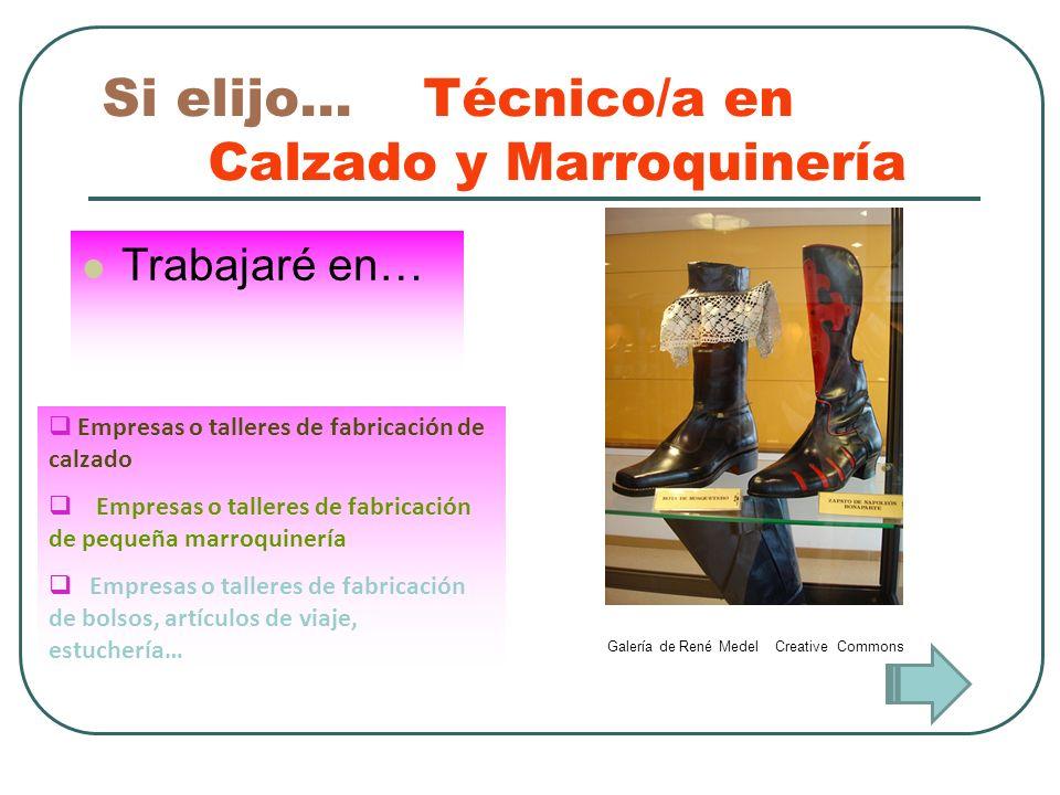 Si elijo… Técnico/a en Calzado y Marroquinería Trabajaré en… Empresas o talleres de fabricación de calzado Empresas o talleres de fabricación de peque
