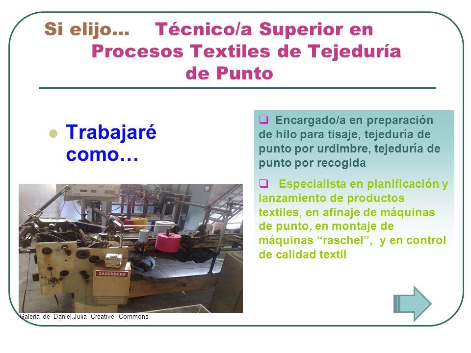 Si elijo… Técnico/a Superior en Procesos Textiles de Tejeduría de Punto Trabajaré como… Encargado/a en preparación de hilo para tisaje, tejeduría de p