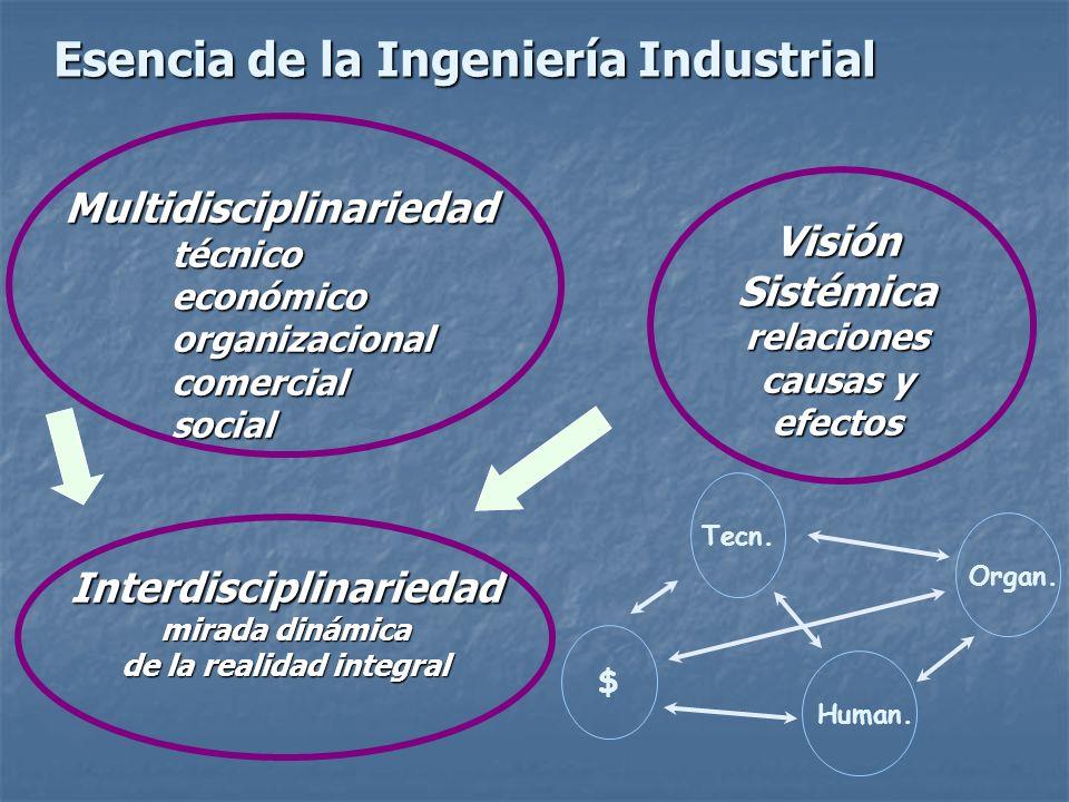 Multidisciplinariedad técnico económico organizacional comercial social Visión Sistémica relaciones causas y efectos Interdisciplinariedad mirada diná