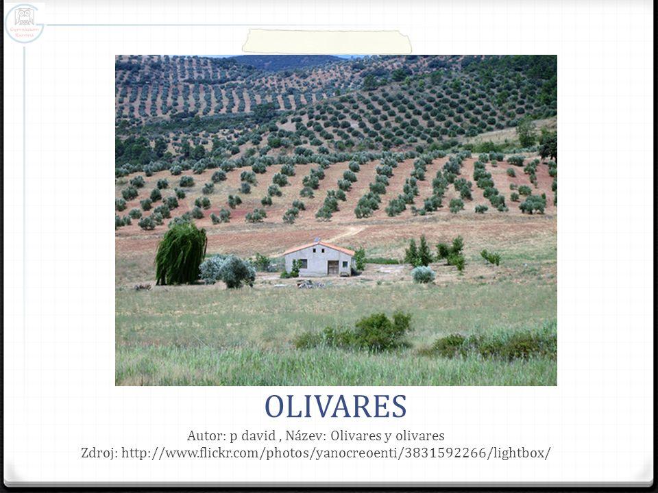 OLIVARES Autor: p david, Název: Olivares y olivares Zdroj: http://www.flickr.com/photos/yanocreoenti/3831592266/lightbox/