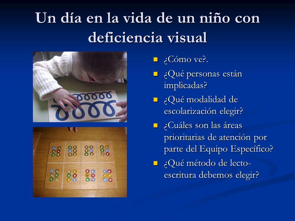 Un día en la vida de un niño con deficiencia visual ¿Cómo ve?. ¿Qué personas están implicadas? ¿Qué modalidad de escolarización elegir? ¿Cuáles son la