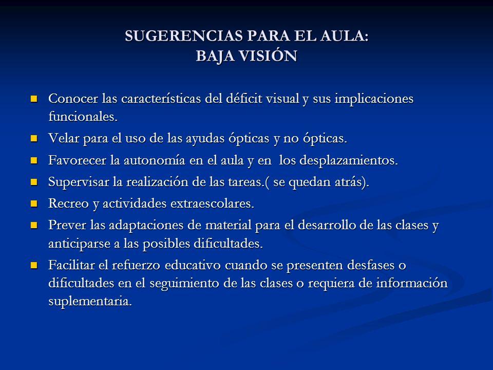 SUGERENCIAS PARA EL AULA: BAJA VISIÓN Conocer las características del déficit visual y sus implicaciones funcionales. Conocer las características del