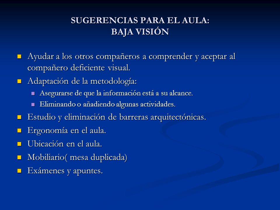 SUGERENCIAS PARA EL AULA: BAJA VISIÓN Ayudar a los otros compañeros a comprender y aceptar al compañero deficiente visual. Ayudar a los otros compañer