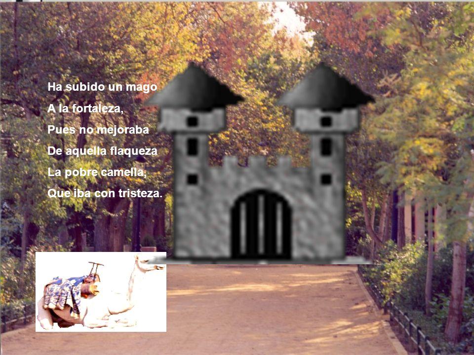 Ha subido un mago A la fortaleza, Pues no mejoraba De aquella flaqueza La pobre camella, Que iba con tristeza.