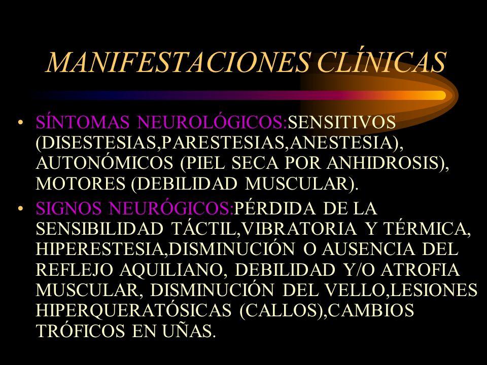 MANIFESTACIONES CLÍNICAS SÍNTOMAS NEUROLÓGICOS:SENSITIVOS (DISESTESIAS,PARESTESIAS,ANESTESIA), AUTONÓMICOS (PIEL SECA POR ANHIDROSIS), MOTORES (DEBILI