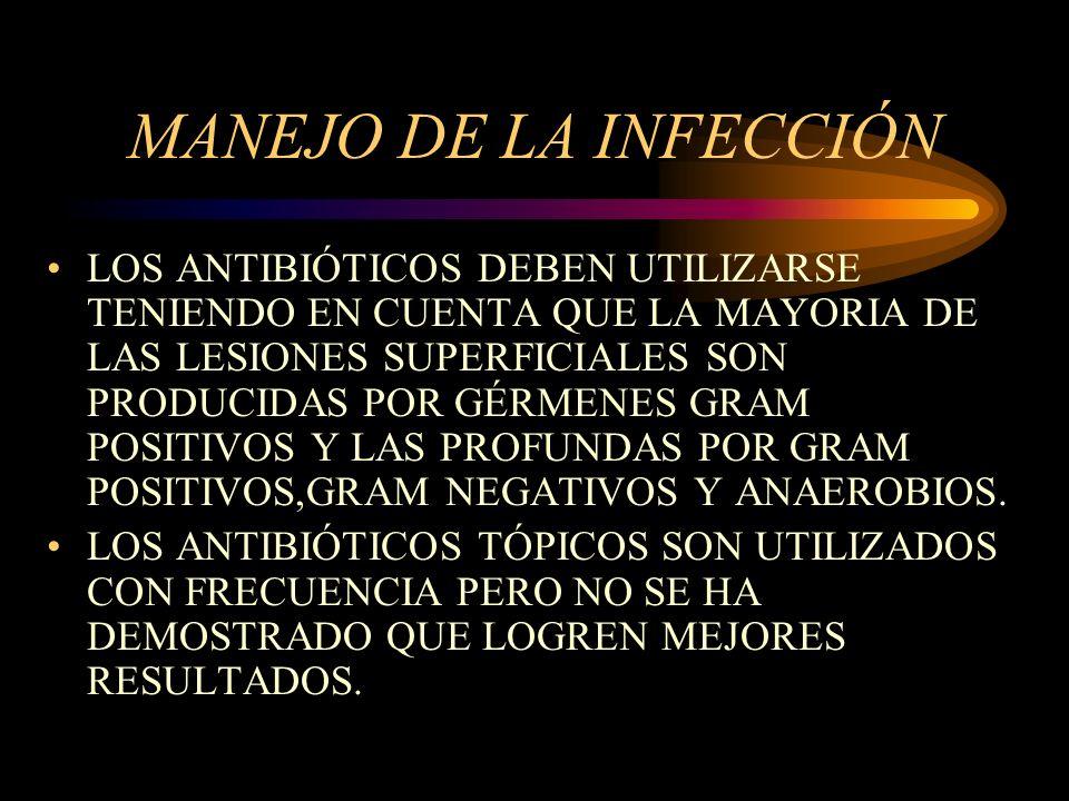 MANEJO DE LA INFECCIÓN LOS ANTIBIÓTICOS DEBEN UTILIZARSE TENIENDO EN CUENTA QUE LA MAYORIA DE LAS LESIONES SUPERFICIALES SON PRODUCIDAS POR GÉRMENES G