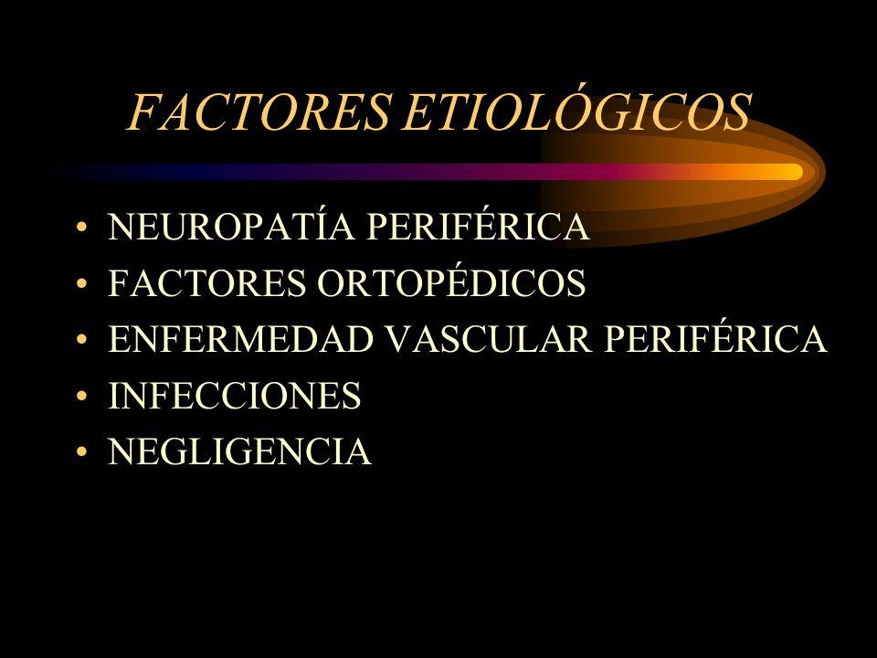 FACTORES ETIOLÓGICOS NEUROPATÍA PERIFÉRICA FACTORES ORTOPÉDICOS ENFERMEDAD VASCULAR PERIFÉRICA INFECCIONES NEGLIGENCIA