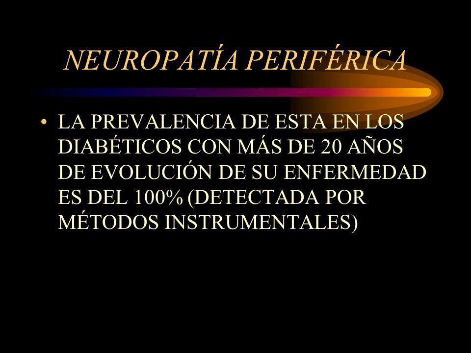 NEUROPATÍA PERIFÉRICA LA PREVALENCIA DE ESTA EN LOS DIABÉTICOS CON MÁS DE 20 AÑOS DE EVOLUCIÓN DE SU ENFERMEDAD ES DEL 100% (DETECTADA POR MÉTODOS INS