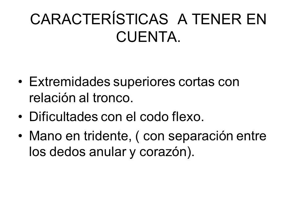 CARACTERÍSTICAS A TENER EN CUENTA.Extremidades superiores cortas con relación al tronco.