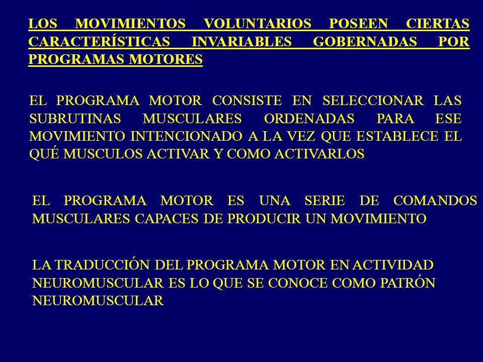 LOS MOVIMIENTOS VOLUNTARIOS POSEEN CIERTAS CARACTERÍSTICAS INVARIABLES GOBERNADAS POR PROGRAMAS MOTORES EL PROGRAMA MOTOR CONSISTE EN SELECCIONAR LAS