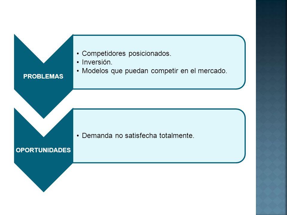 PROBLEMAS Competidores posicionados. Inversión. Modelos que puedan competir en el mercado. OPORTUNIDADES Demanda no satisfecha totalmente.