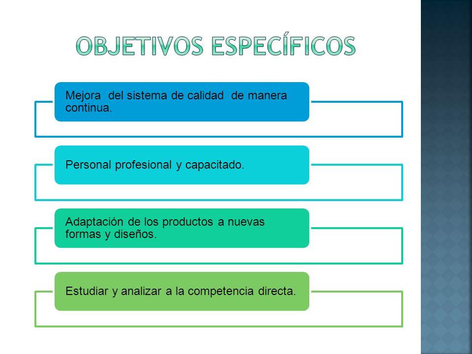 Mejora del sistema de calidad de manera continua. Personal profesional y capacitado. Adaptación de los productos a nuevas formas y diseños. Estudiar y