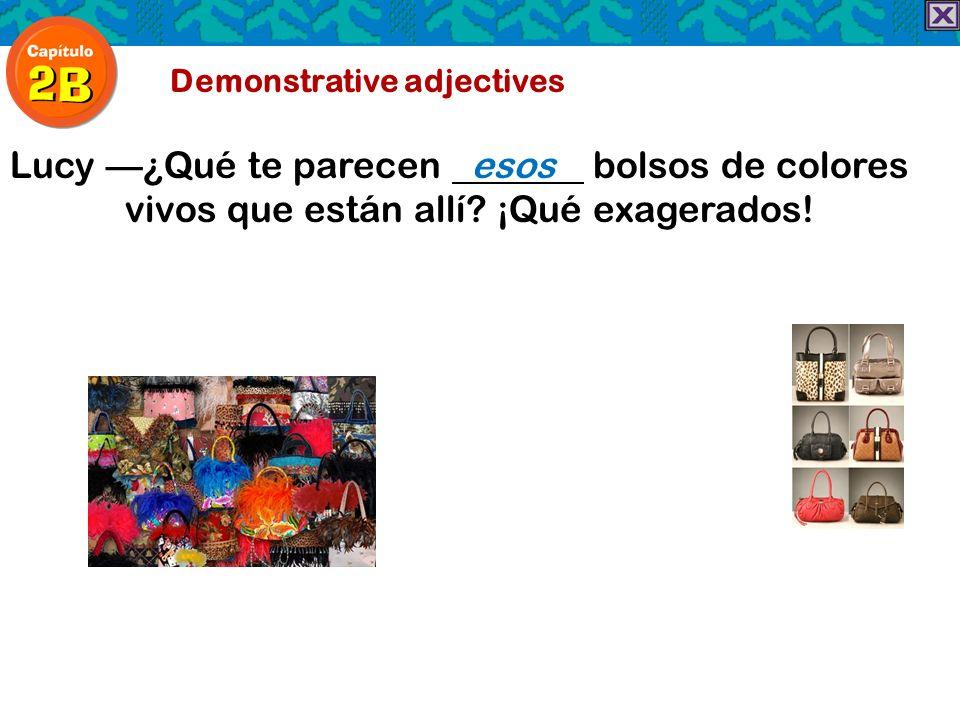 Demonstrative adjectives Lucy¿Qué te parecen esos bolsos de colores vivos que están allí? ¡Qué exagerados!