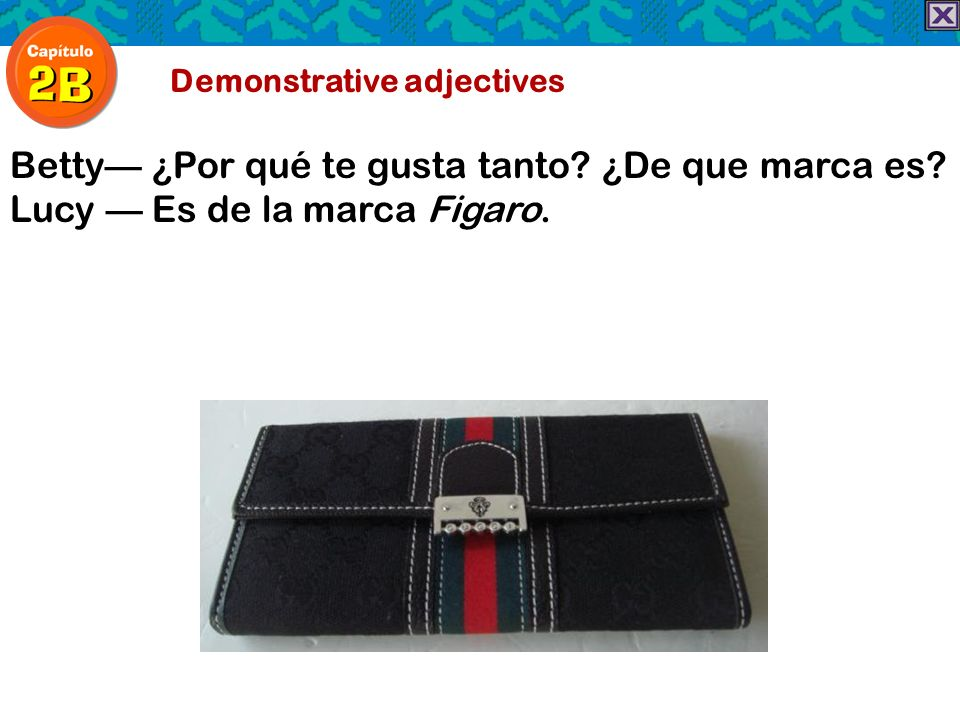 Demonstrative adjectives Betty ¿Por qué te gusta tanto? ¿De que marca es? Lucy Es de la marca Figaro.