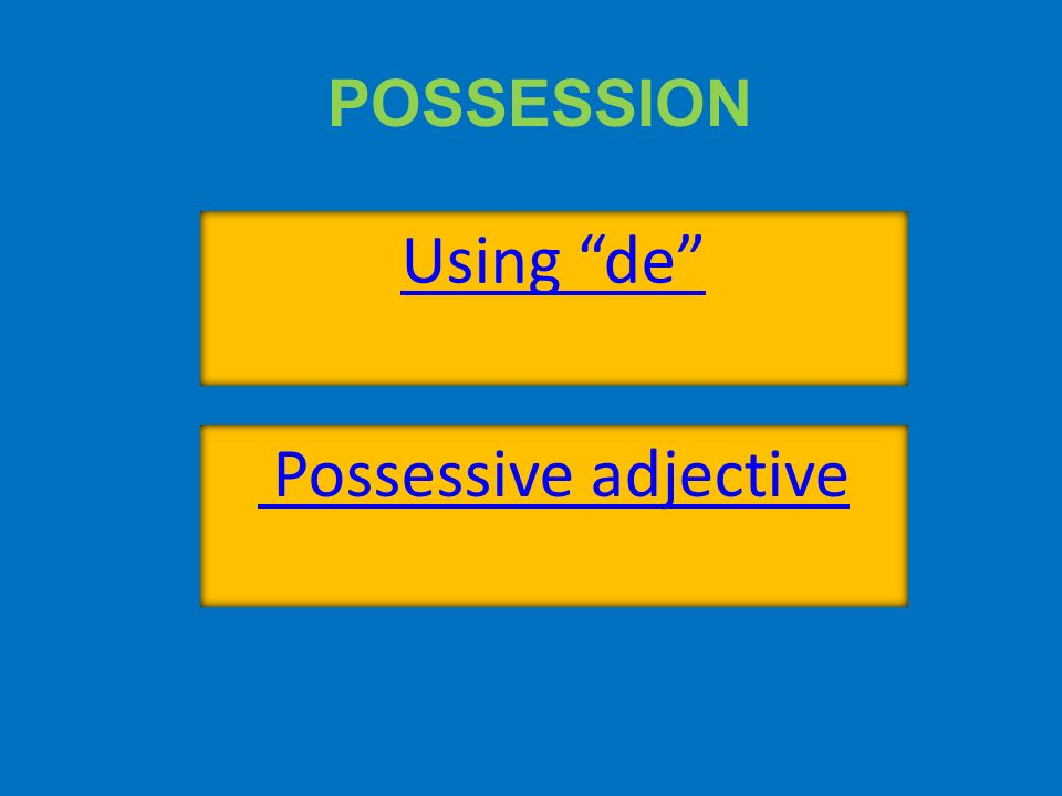 Possessive adjectives agree in number and gender with noun they describe.