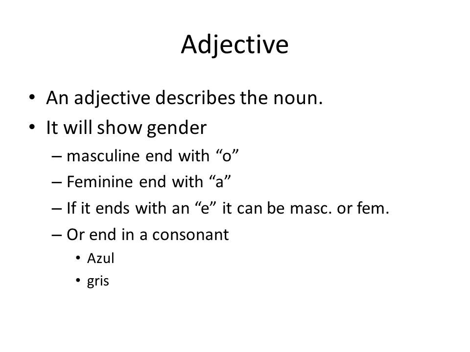 Adjective An adjective describes the noun.