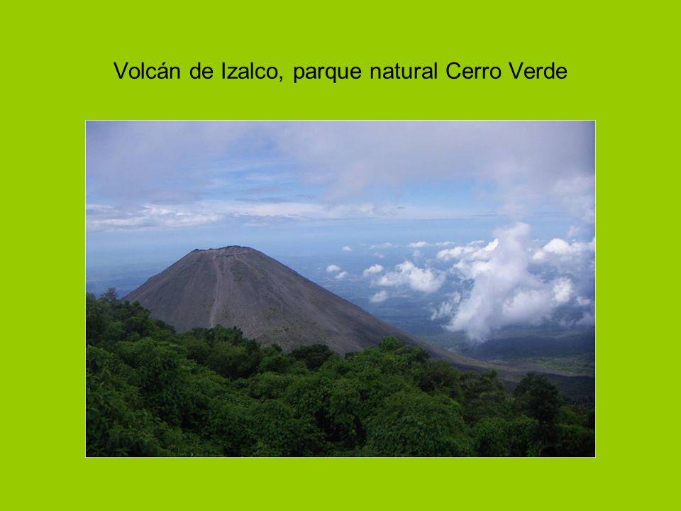 Volcán de Izalco, parque natural Cerro Verde