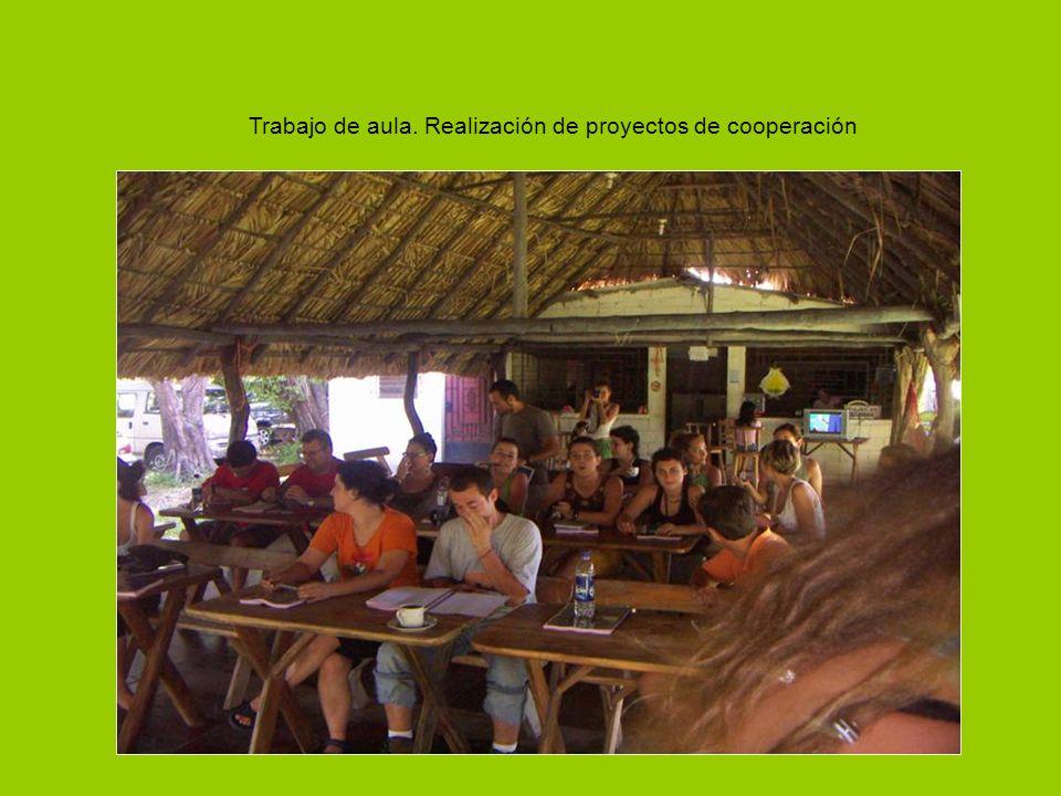 Trabajo de aula. Realización de proyectos de cooperación
