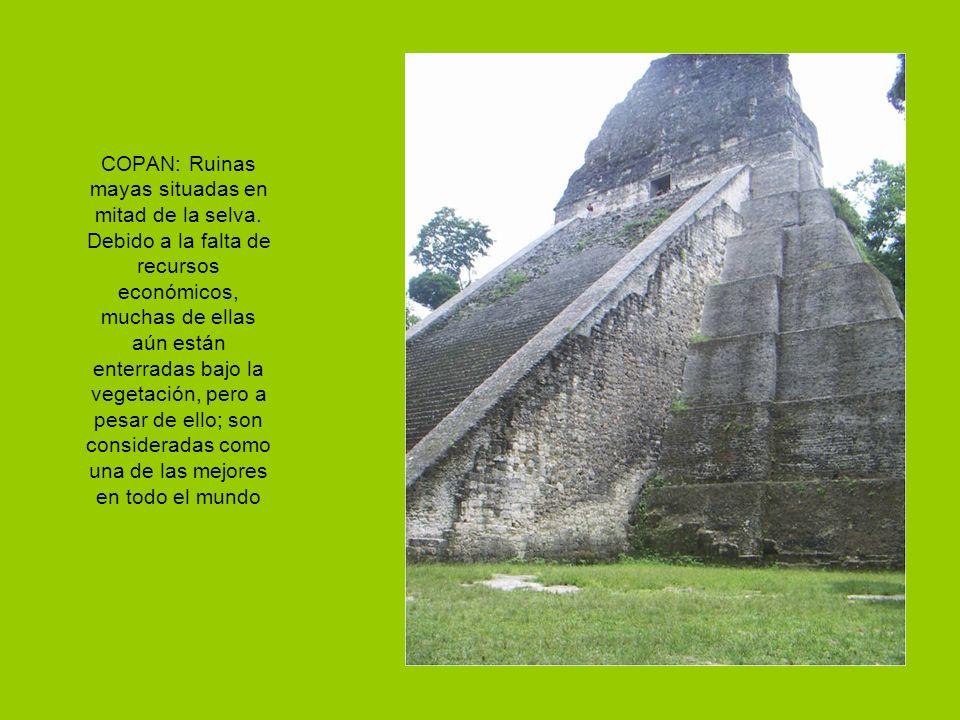 COPAN: Ruinas mayas situadas en mitad de la selva.