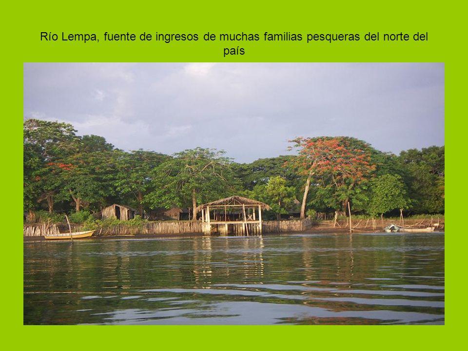 Río Lempa, fuente de ingresos de muchas familias pesqueras del norte del país