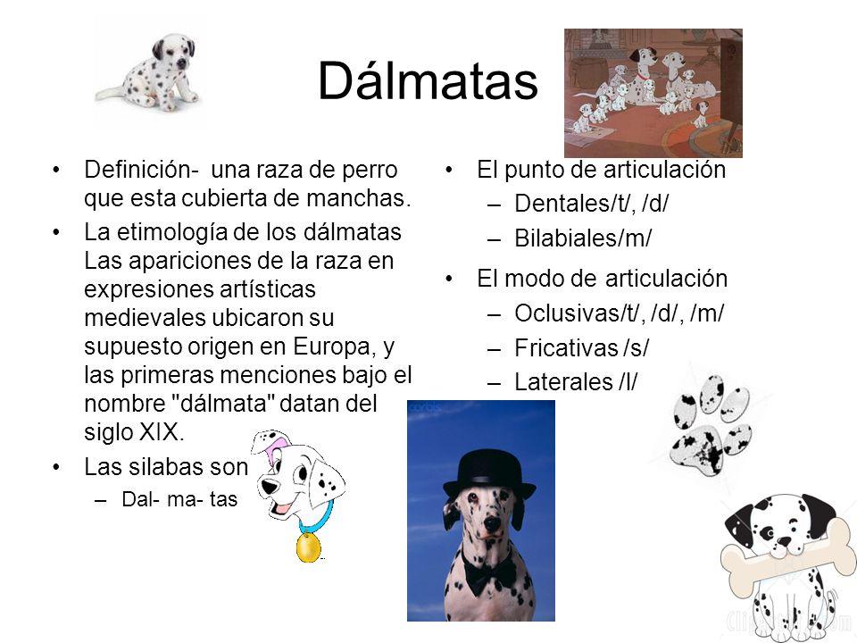 Dálmatas Definición- una raza de perro que esta cubierta de manchas.